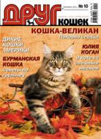 cat_cover
