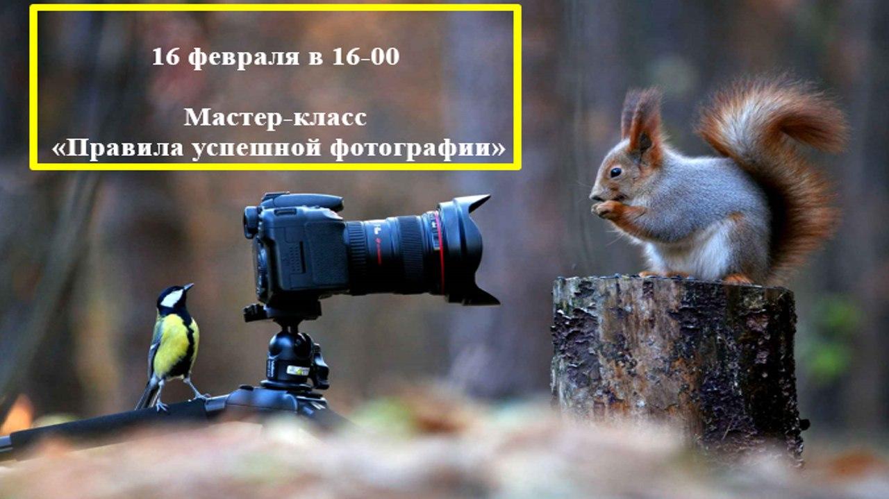 Правила успешной фотографии